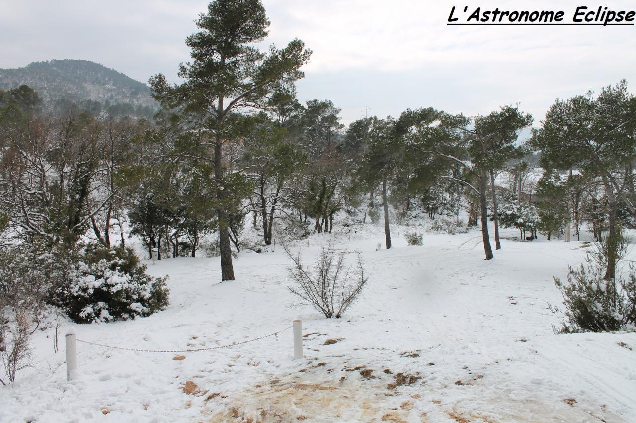 Verte ou blanche, que la nature est belle!