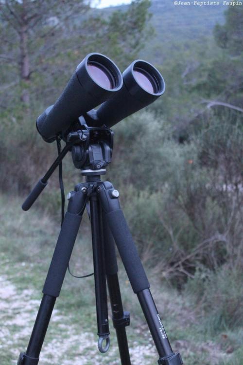 Jumelles Perl de nuit 12x80 (image L'Astronome Eclipse)